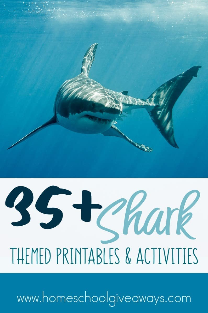July is a great time to learn about all things Shark! Between Shark Awareness Day on July 14th and Shark Week, they will love using these printables and activities. :: www.homeschoolgiveaways.com