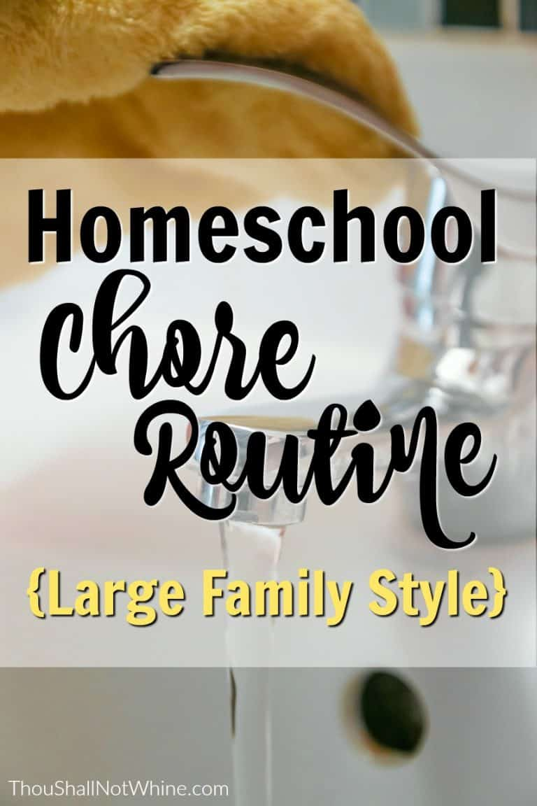 Homeschool-Chore-Routine-768x1152