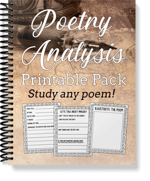 poetry-analysis