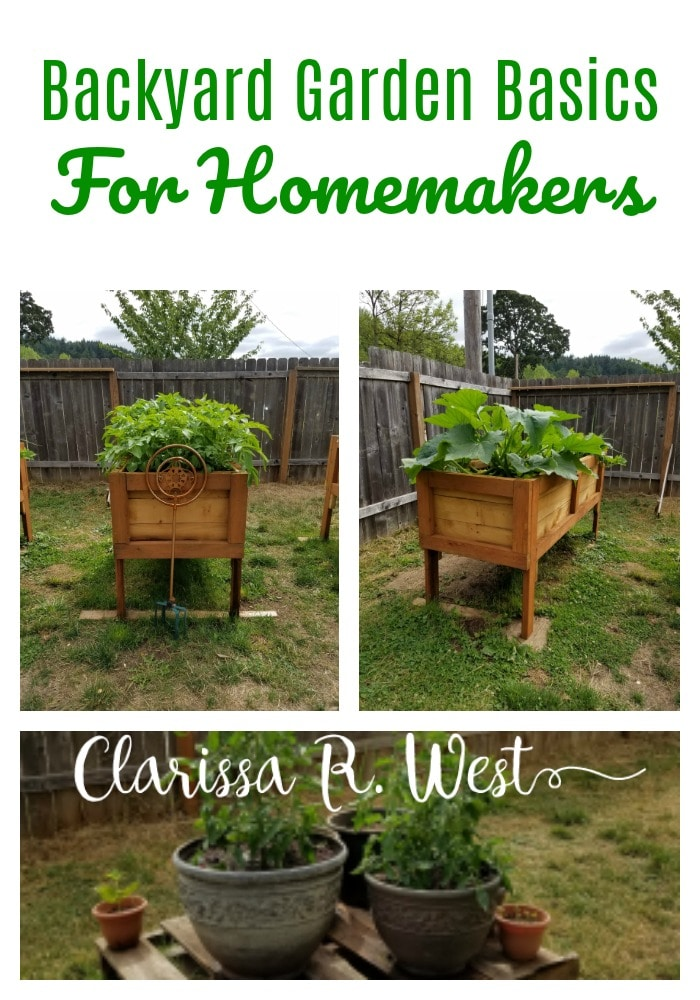 Backyard-Garden-Basics-For-Homemakers