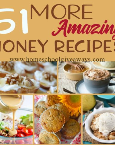 With these additional honey recipes, you can celebrate National Honey Month throughout the month of September. You'll find over 50 breakfasts, beverages, appetizers, soups, salads, breads, side dishes and desserts to choose from! :: www.homeschoolgiveaways.com