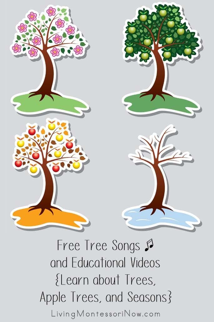 Free-Tree-Songs-and-Educational-Videos-Learn-about-Trees-Apple-Trees-and-Seasons