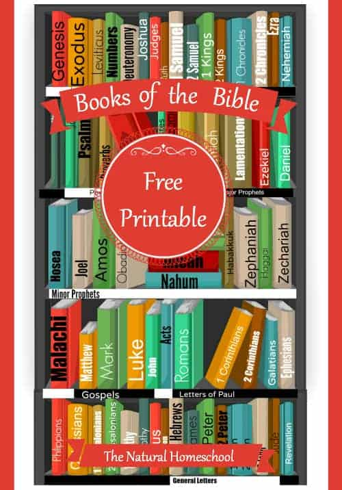 Books of the Bible FREE Printable Worksheets and More ...