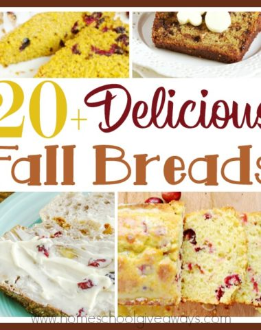 Does the cool weather of fall get you in the mood for baking? These fall breads are perfect for any gathering with family and friends, to give as gifts, or just for a delicious treat! #fall #baking #fallbreads #breads