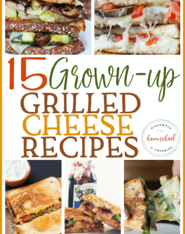 """Asimple grilled cheese doesn't always fill me up any more. So when I heard about these """"grown-up"""" grilled cheese sandwiches, I was intrigued. I have always loved a good sandwich, but these are seriously creative! #sandwich #grilledcheese #parents #moms"""
