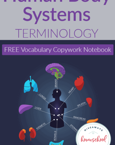 Body Systems-terminology