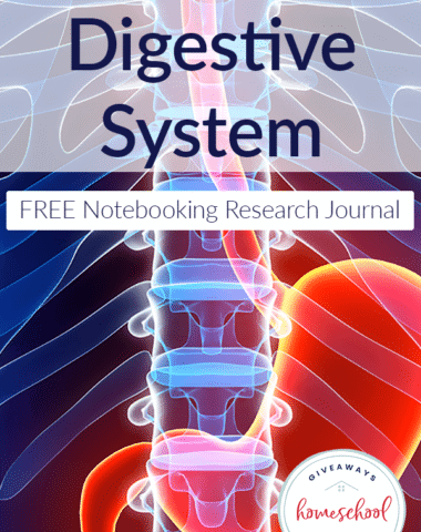 diseases-digestive-system-notebook