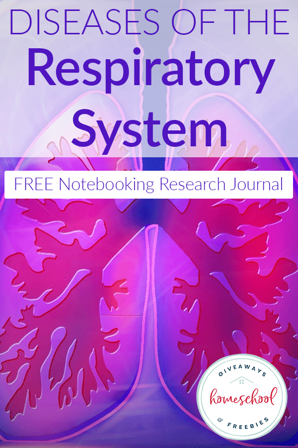 diseases-respiratory-system-notebook