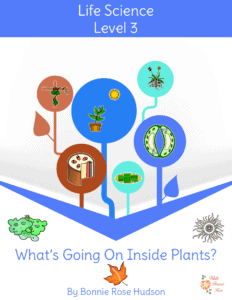 What's Going On Inside Plants