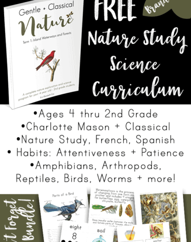 FREE Charlotte Mason Nature Study curriculum! It was created to be both CM and Classical with memorization, nature study, poetry recitation, handicrafts, and more. This BRAND NEW program is 120 pages of goodness, encouragement, and amazing resources.
