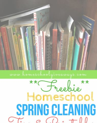 Tips and free printables to help with homeschool spring cleaning. #springcleaning #homeschoolorganization