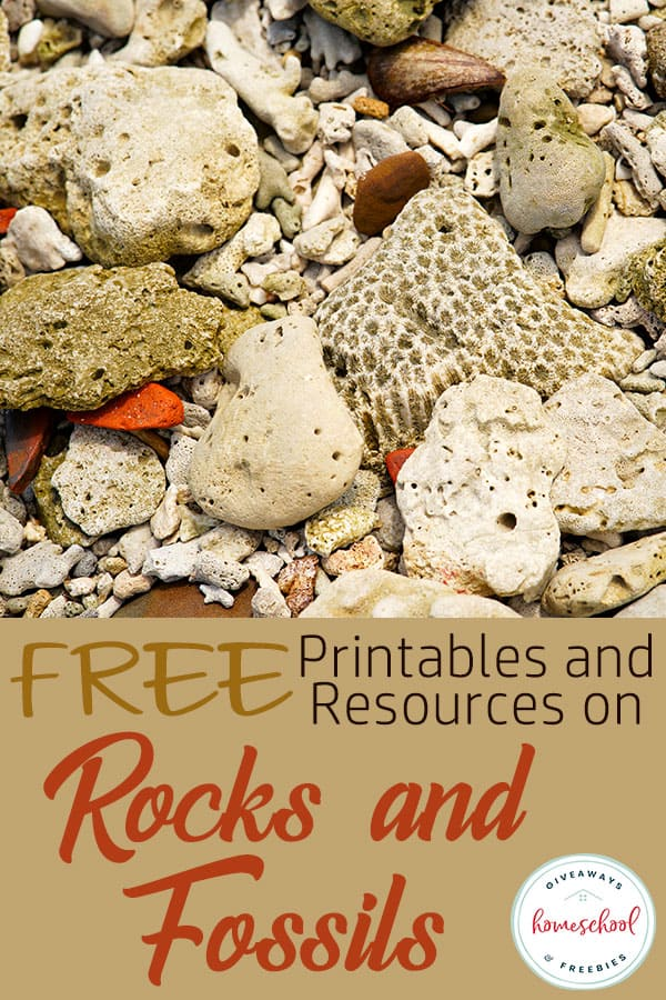 FREE Printables and Resources on Rocks and Fossils #homeschoolscience #rocksandfossils