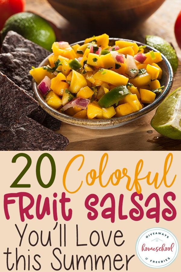 Have you ever tried fruit salsa? They are wonderfully refreshing and perfect for the hot summer months! Check out these delicious recipes for picnics, family gatherings or anytime! #fruitsalsa #recipes #summer #hsgiveaways