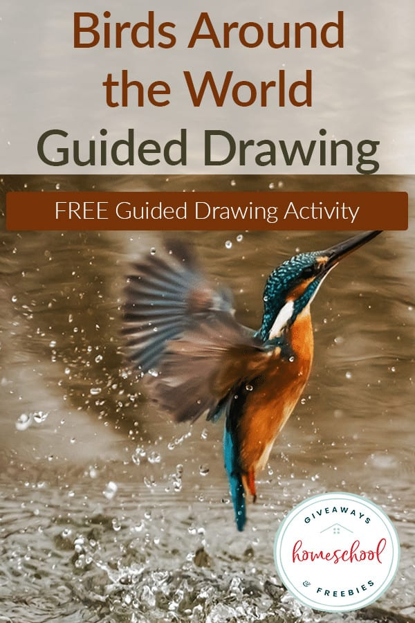 Guided-Drawing-Birds-Around-the-World