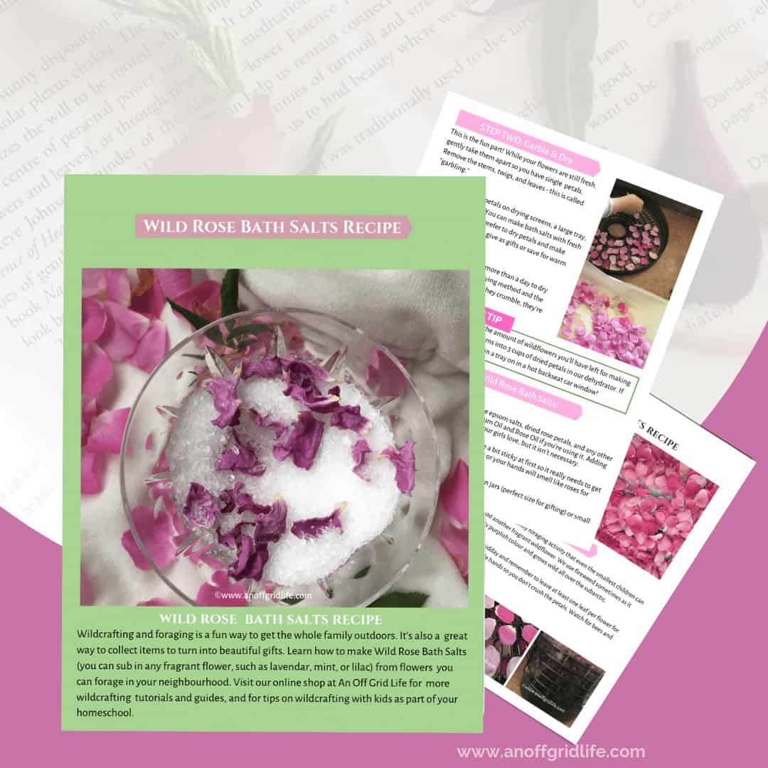 Make this Wild Rose Bath Salts Recipe with your children and they'll be ready to jump in that tub!
