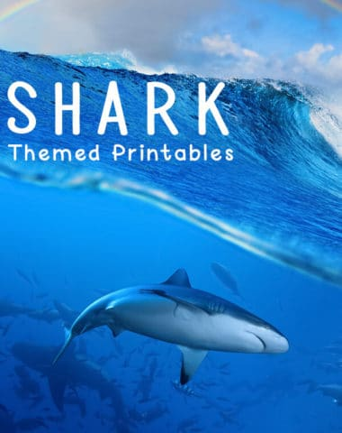 This is an amazing list of Free Shark Printables that could easily be incorporated into your homeschool studies, shark unit or to help improve math and literacy skills.
