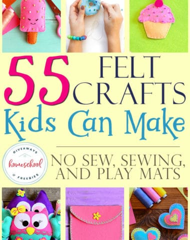 Felt crafts are some of my favorites. They are usually fairly easy to do, but turn out great results. Plus, my kids can get in on the fun too. Check out these amazing felt crafts for any age and any one. From no sew crafts to simple sewing patterns to play mats for the kids to use over and over, we've got you covered! #recipes #crafts #feltcrafts #hsgiveaways