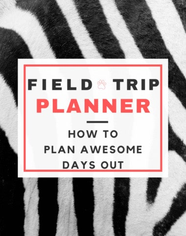image of zebra furn with text overlay. Feild Trip Planner: HOw to Plan an Awesome Day Out from www.Homeschoolgiveaways.com