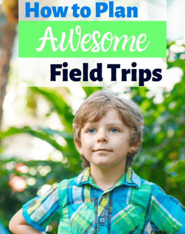 Plan fun and memorable field trips for your family with these tips. #homeschool #fieldtrips