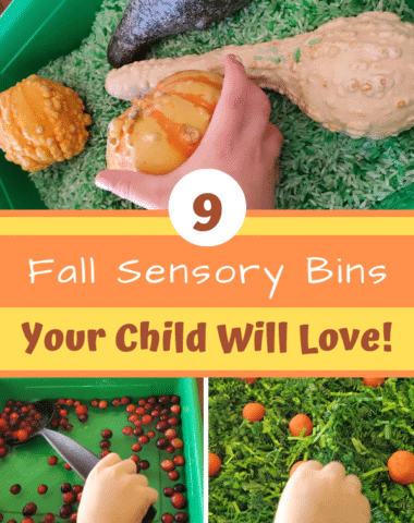 Fall sensory bins great for fall or Thanksgiving. #preschool #sensorybin #sensory #finemotor #Thanksgivingactivities