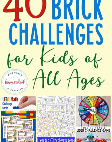 Do your kids love LEGO bricks? Then they will love this variety of challenges. From math to STEM to holidays and more! #LEGO #brickchallenges #homeschoolers #hsgiveaways