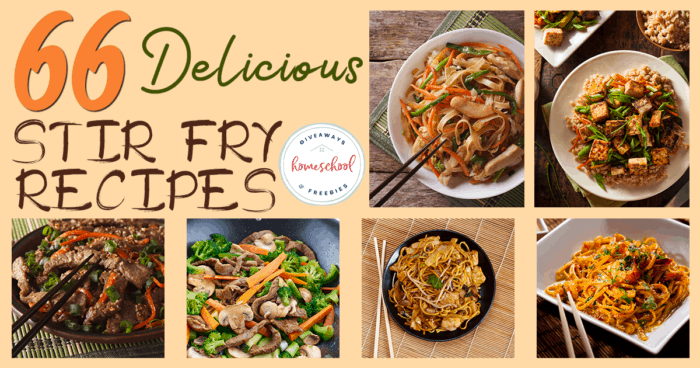 Does your family love oriental food? It's tasty, but it sure can be expensive! These make-at-home recipes can really hit the spot without blowing your budget. #recipes #hsgiveaways #stirfry #cooking