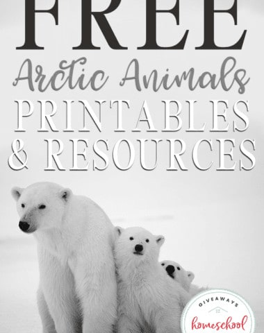 Are you studying and learning about the arctic this year? Study more about the animals that live in this frigid tundra with these FREE printables and resources. #winter #arcticanimals #winterlessons #hsgiveaways