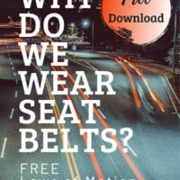 freeway at night with text ooverlay Free Laws of Motion Experiments Download for Why do we wear seat belts? On ww.HomeschoolGiveaways.com