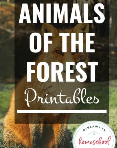 Animals of the Forest Printables.