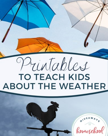 Printables to Teach Kids About the Weather.