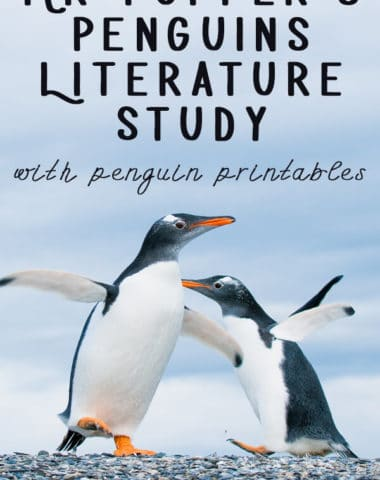 mr popper's penguins literature study