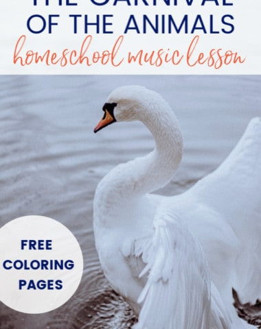 swan image for Carnival of the Animals lesson