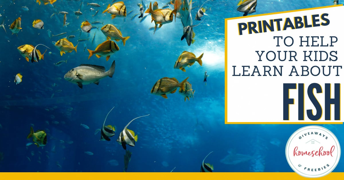 Printables to Help Your Kids Learn About Fish. #learnaboutfish #allaboutfish #fishunit