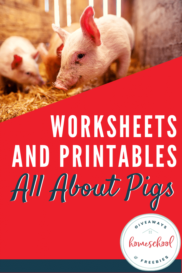 Worksheets and Printables All About Pigs #allaboutpigs #learningaboutpigs #pigprintables #pigresources