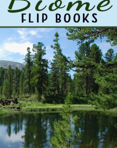 Biome Flip Books
