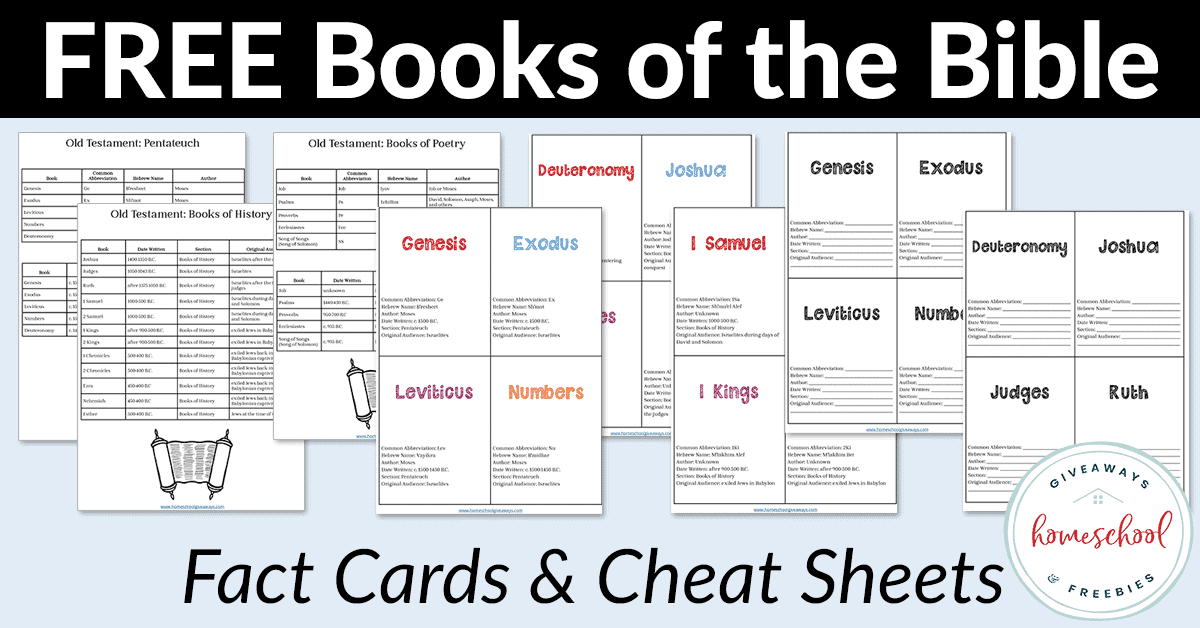 It is a photo of Password Cheat Sheet Printable throughout sans