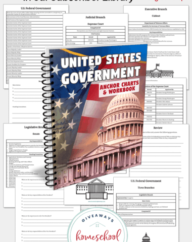 worksheets of a government unit study