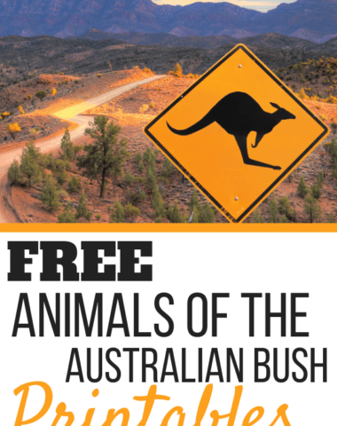 FREE Animals of the Australian Bush Printables text with photo of kangaroo crossingsign.
