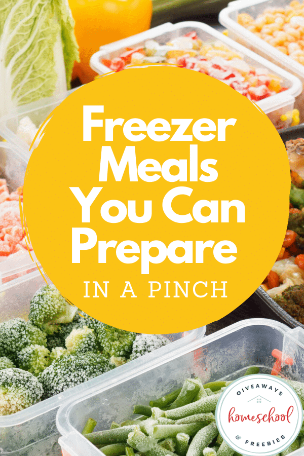 Freezer Meals You Can Prepare in a Pinch #easyfreezermeals #fastfreezermeals #preparemealsinapinch #homeschoolgiveaways