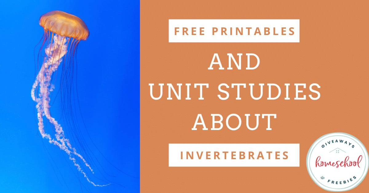 free printables and unit studies about invertebrates text with photo of jellyfish swimming in water.