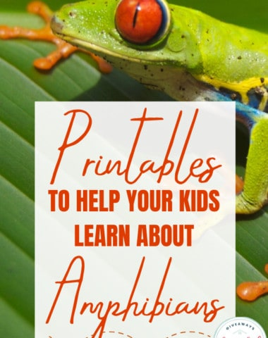 Printables to Help Your Kids Learn About Amphibians. #amphibianprintables #learningaboutamphibians #learnaboutamphibians #reptilesandamphibians