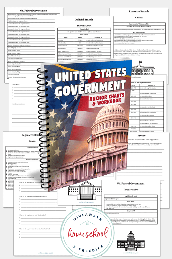 Government workbook pages