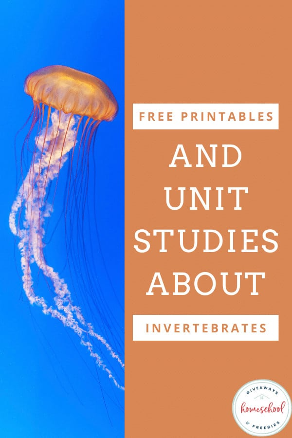 free printables and unit studies about invetebrates text with photo of a jellyfish in water.