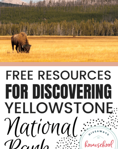Free Resources for Discovering Yellowstone National Park text with a photo of a buffalo.