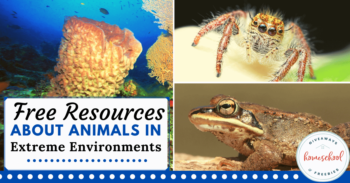 Free Resources About Animals in Extreme Environments. #extremeenvironments #extremeanimals #anaimalsofextremeplaces