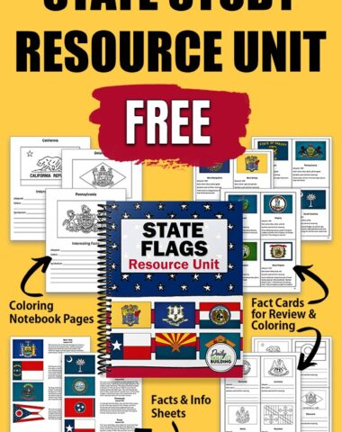 yellow background, worksheets and fact cards for state flags with text overlay