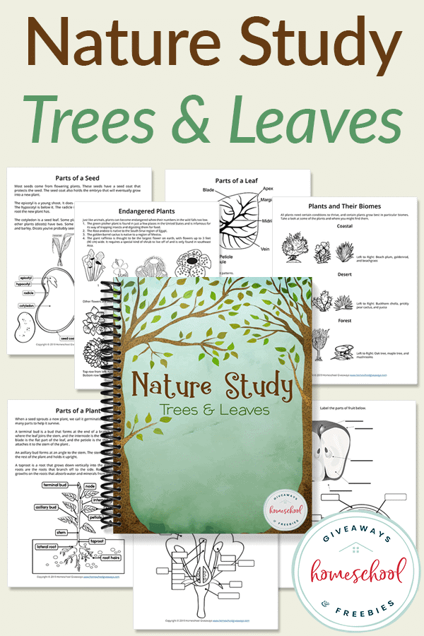 nature study book with worksheets