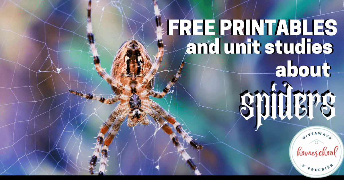 Free Printables and Unit Studies About Spiders. #spiderprintables #spiderunitstudies #spiderresources