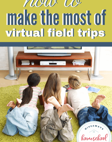 How to Make the Most of Virtual Field Trips. #virtualfieldtrips #makethemostofvirtualfieldtrips #virtualrealityfieldtrips #makelearnignfun