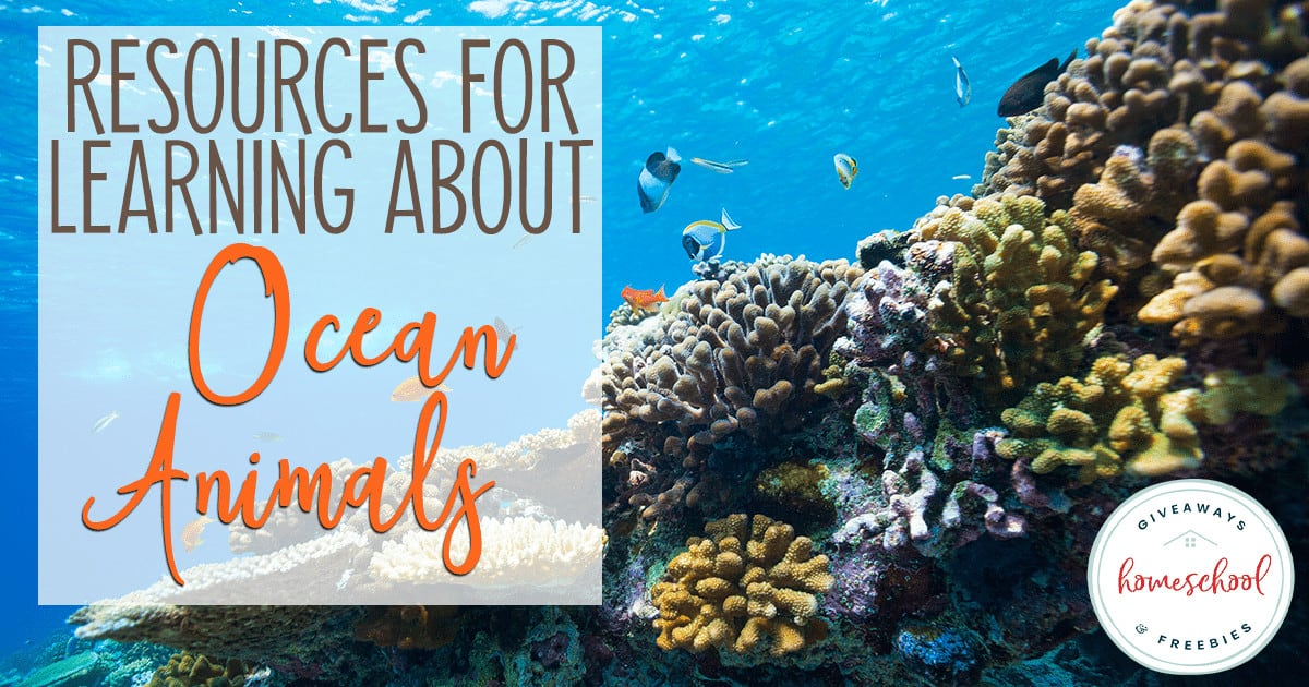 """underwater coral reef with overlay """"Resources for Learning About Ocean Animals"""""""